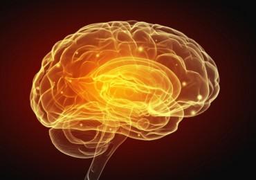 inteligencias múltiples - Google Images