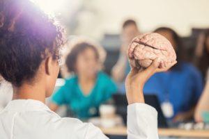 El cerebro masculino y femenino